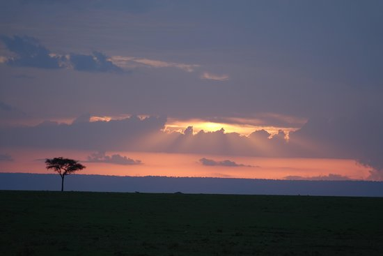 Great Plains Conservation Mara Plains Camp: Sunset at Mara Plains