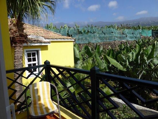 Villa Rosalva: Bananenplantage