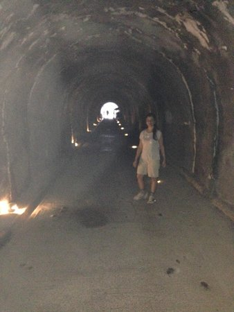The Marmara Antalya: tunnel that leads to the sea restaurant from the Hotel lawn