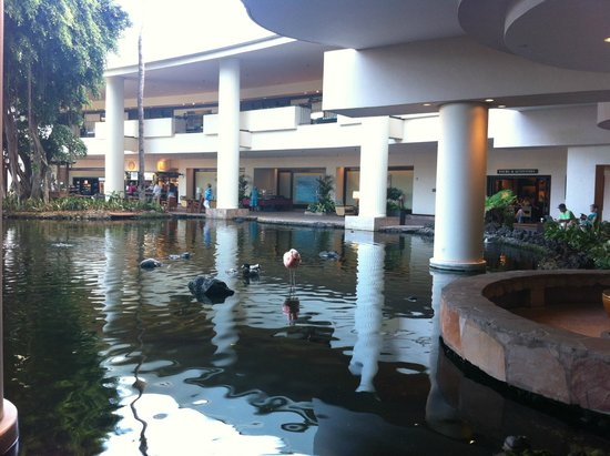 The Westin Maui Resort & Spa: пруд отеля
