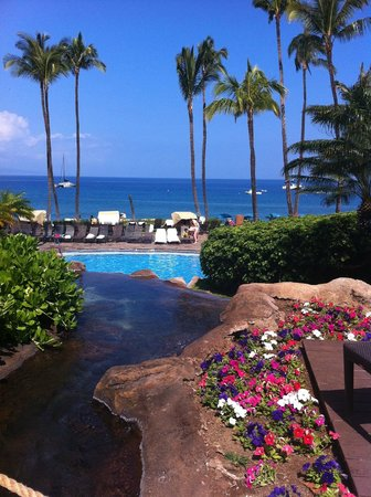 Westin Maui Resort And Spa: бассейн отеля