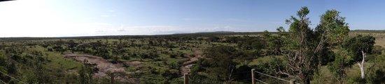 Eagle View, Mara Naboisho : MAGESTIC VIEW