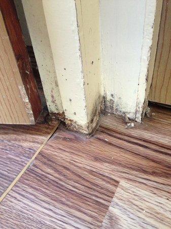 Pontins Brean Sands Holiday Park: Skirting board around bathroom door