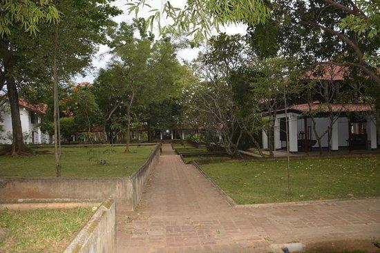 Cinnamon Lodge Habarana : Way to the rooms