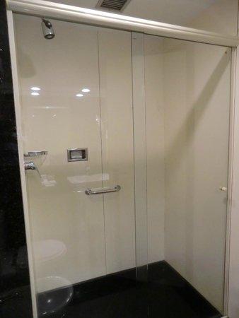 Windsor Atlantica Hotel: Shower 2809