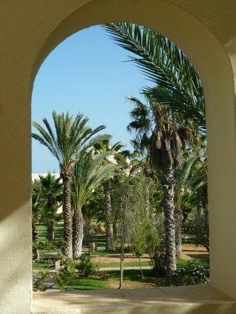 Yadis Djerba Golf Thalasso & Spa: Vista del parco