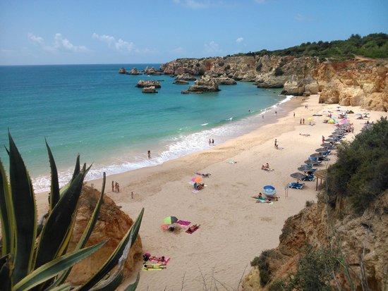 Smartline Amarilis: playa
