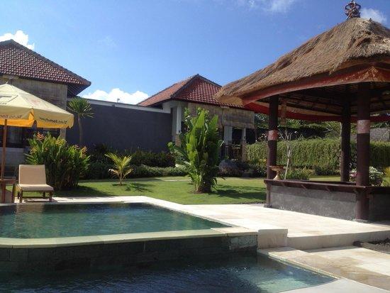 Bali Bule Homestay: Pool