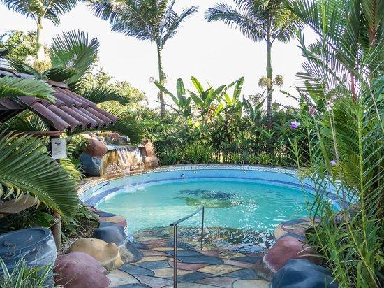 Blue River Resort & Hot Springs: piscina termal