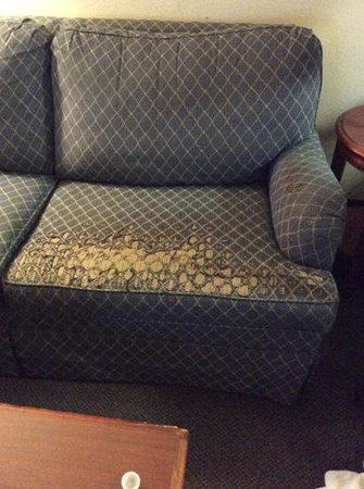 Hawthorn Suites by Wyndham Chelmsford/Lowell: the couch in this suite