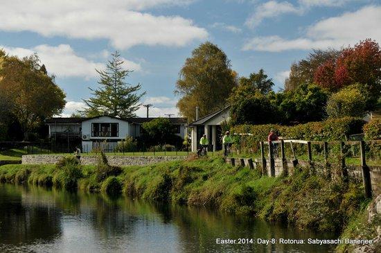 Waiteti Trout Stream Holiday Park : Scenery along the trout stream towards Lake