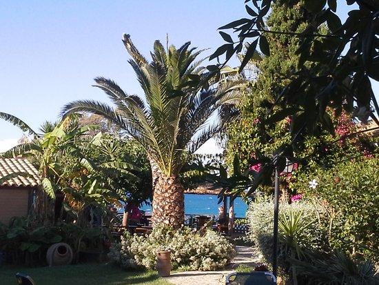 Porta del Mar Beach Hotel: view from villa