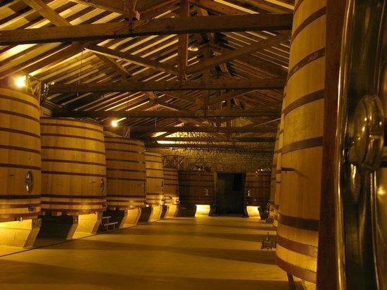 CVNE Vino: Young fermentation vats