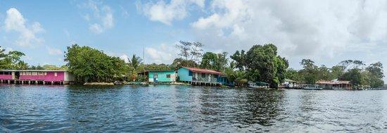 Cabinas El Icaco Tortuguero: llegando a Tortuguero