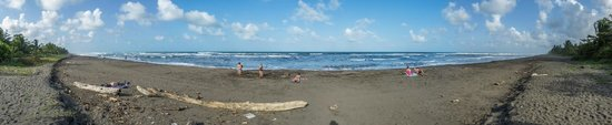 Cabinas El Icaco Tortuguero: playa Tortuguero delante del hotel