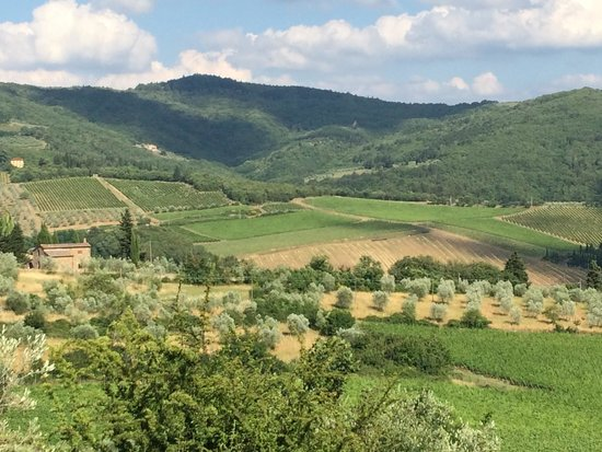 Villa Le Barone: View