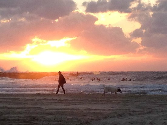 Orchid Tel Aviv: block 30 minutes for amazing sunsets