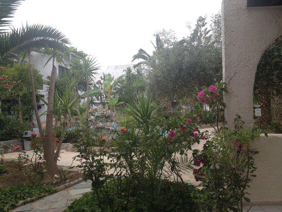 Sandy Beach Hotel : Территория отеля