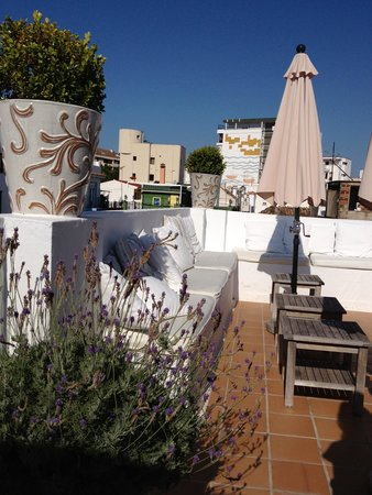 The Town House : Roof terrace