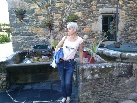 Pazo da Trave: En el patio, zona ajardinada