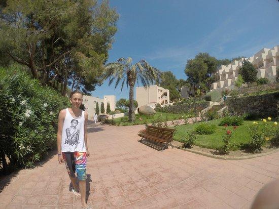 Invisa Hotel Club Cala Blanca : Hotellområdet