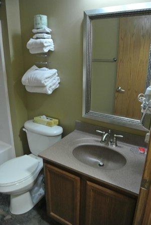 Econolodge Jamestown: bathroom