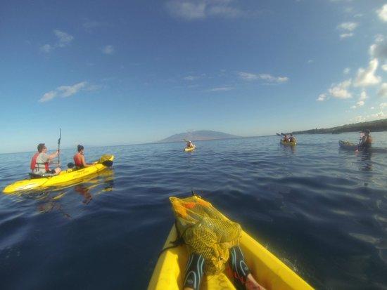 Aloha Kayaks Maui: Makena Ocean Adventure