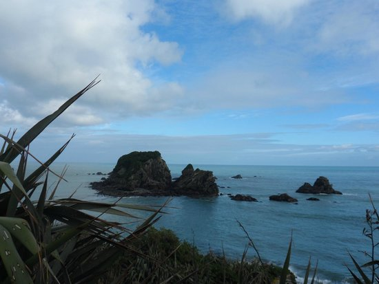 Cape Foulwind Walkway: Cape Foulwind