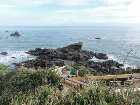 Cape Foulwind Seal Colony: Cape Foulwind aka Rocky Cape