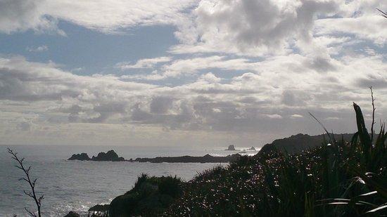 Cape Foulwind Walkway: Ca[e Foulwind