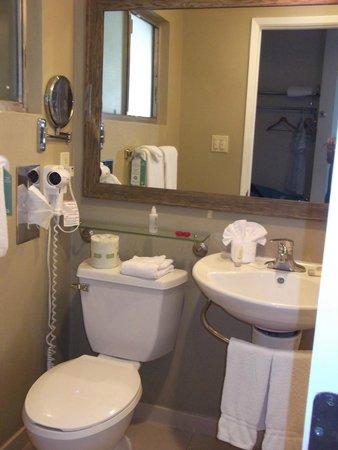 Vagabond Inn - San Diego Airport Marina: bathroom