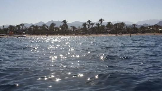 Hilton Sharm Dreams Resort : the private beach