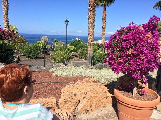 Bahia Principe Tenerife: View from Restaurant Terrace