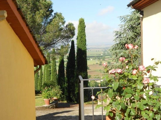 Agriturismo La Maesta: View of the driveway