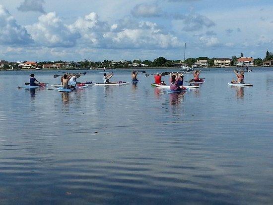 Sarasota Paddleboard Company: Yogaboard