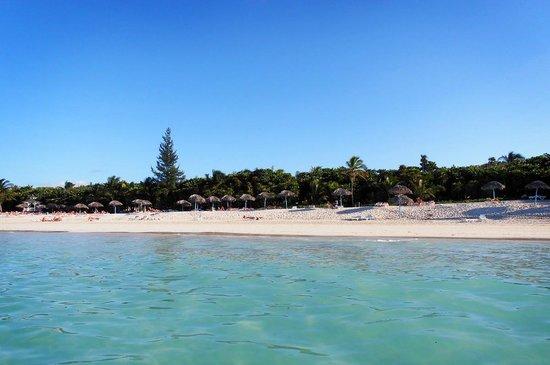 Sol Palmeras: Beach