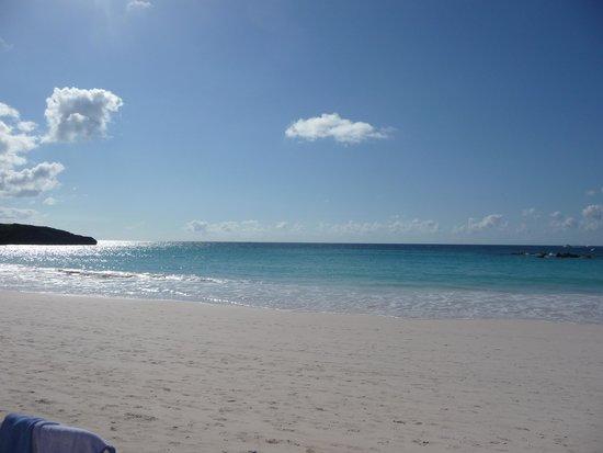 Horseshoe Bay Beach: beach