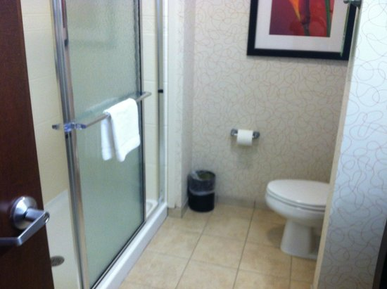 Hampton Inn Richmond-Airport: Huge walk-in shower