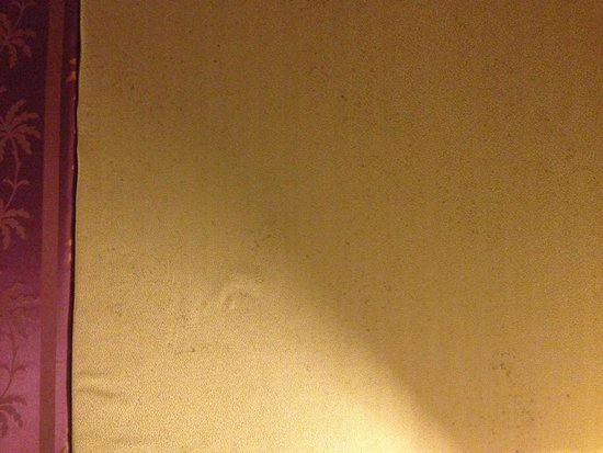 Lullaby Inn: Millions of mould stains on the fabric covering the wall behind the bed