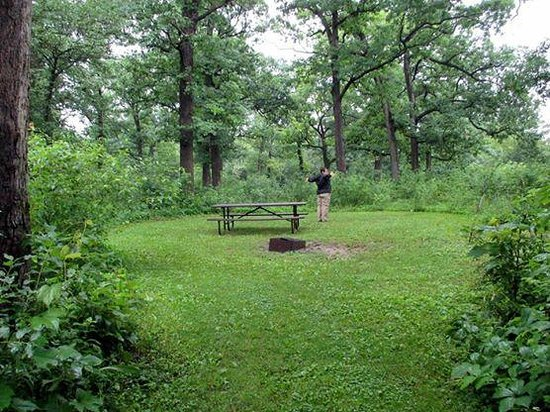 Big Foot Beach State Park: Site #30 - typical size.  Each has a picnic table and fire pit