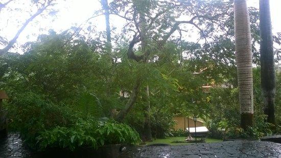 Pousada Le Palmier: Un lugar con mucho verde, en el patio de la posada. Vista desde el salón de juegos un día de llu