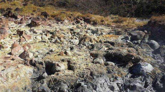 Rincon de La Vieja National Park: Parque Nacional