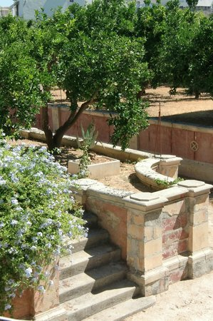 Palazzo Leuzzi B&B: L'antico agrumeto