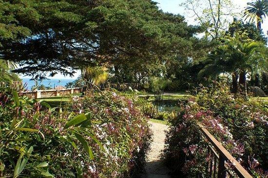 Jardin Botanique Et Exotique Val Rahmeh: Val Rameh Botanical Garden View To  The Ocean
