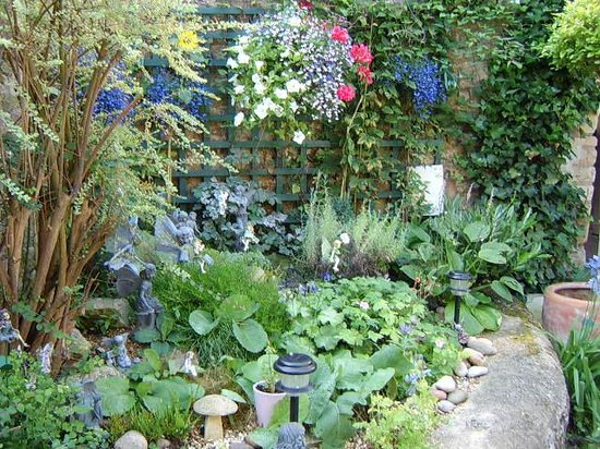 Woodstock Guest House : our garden