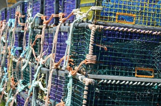 Voyageur Motel: Lobster Traps