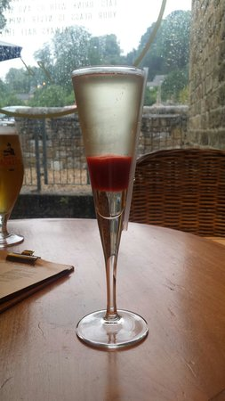The Pointing Dog & Duck: Most amazing Bellini Classic!