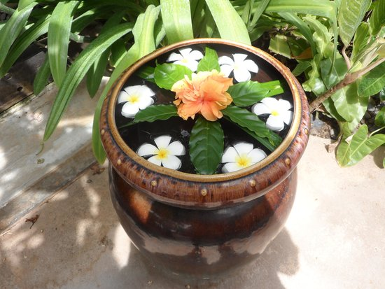 Buri Rasa Village Samui : Moke flowers on the water