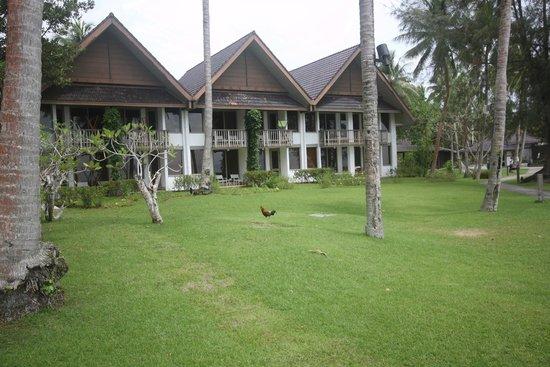 Palau Pacific Resort: бунгало и гуляющие по территории курочки