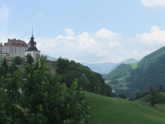 Hotel de Gruyeres Wellness & Seminaires: View from balcony -1
